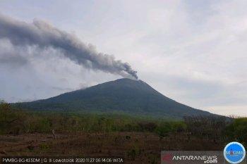 Gunung Ili Lewotolok alami erupsi