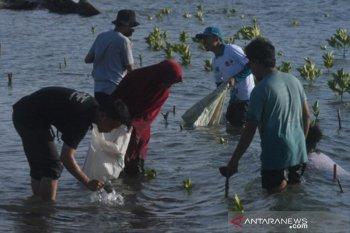 Aksi bersih sampah di Pantai Palu