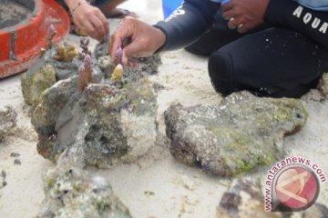 Bromo-Semeru dan Taka Bonerate diakui UNESCO