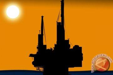 Shell tutup kilang minyak terbesar Eropa akibat kebakaran