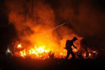 Kebakaran lahan di perbatasan Jambi-Sumsel