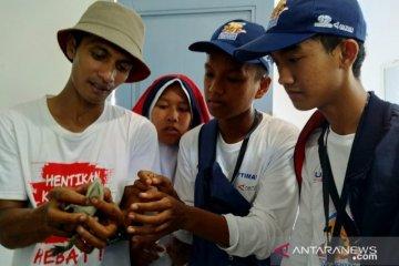 Kampoeng Reklamasi PT Timah tangkarkan hewan langka