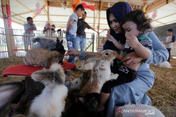 Taman Wisata Kelinci