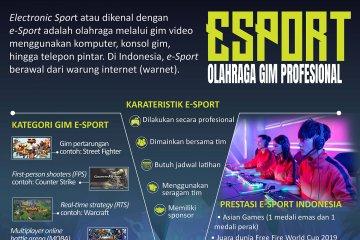 E-Sport, olahraga gim profesional