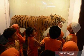 Edukasi mengenal satwa di museum Aceh