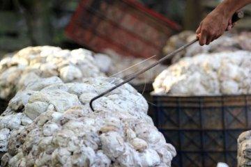 Produksi pabrik karet di Sumatera Selatan berkurang 35 persen