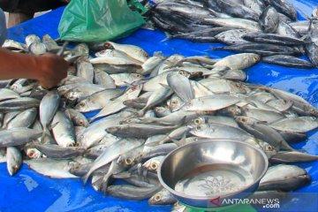 Pedagang ikan segar mengeluh sepinya pembeli