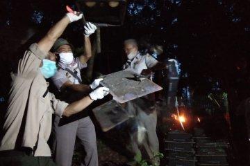 Ratusan burung kacer hasil penahanan karantina dilepasliarkan