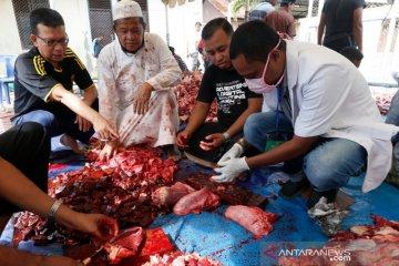 Pengawasan kesehatan daging kurban