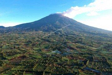 Laju deporestasi hutan dan lahan