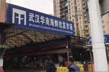WHO duga Wuhan bukan tempat awal penularan corona
