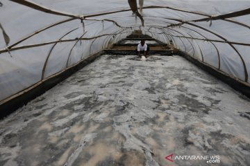 Pengelohan garam metode terowongan