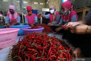 Kenaikan produksi sambal pecel