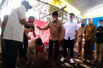 Pemkab Garut dan Agro Surya salurkan 56 domba untuk penuhi kebutuhan gizi warga