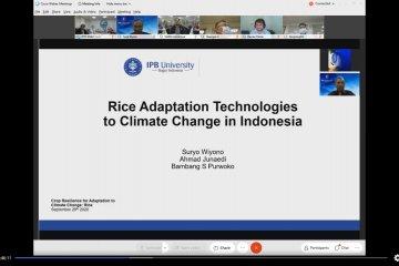 IPB perkenalkan teknologi padi Indonesia di internasional