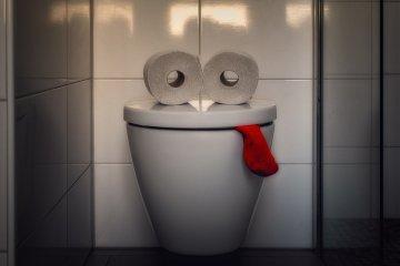 Dokter sarankan jangan lama-lama BAB di WC duduk