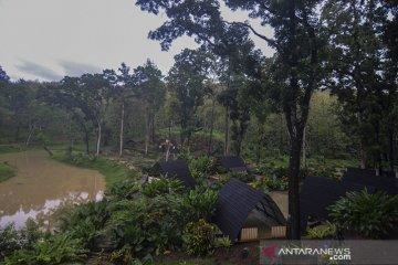 Wisata alam Situ Mustika
