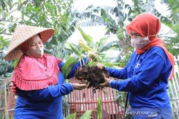 KWT Putih Berseri Tangerang buka layanan pelatihan budidaya tanaman