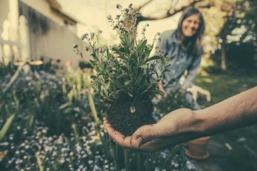 Bertanam bisa bantu lawan penyakit hingga jaga daya ingat
