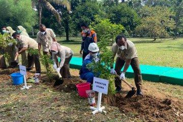 Pusri tanam 2.000 pohon peringati Hari Bumi