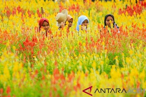 Wisata taman bunga di Aceh Jaya