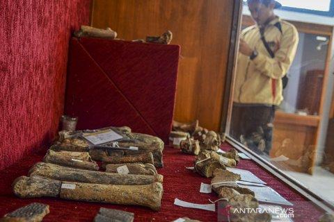 Museum fosil Tambaksari