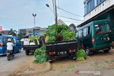 Sayuran pasar Bogor