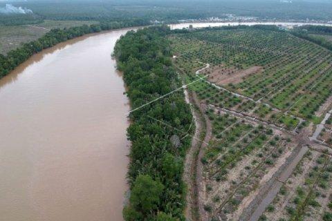 Kondisi kawasan penyangga cagar alam mangrove