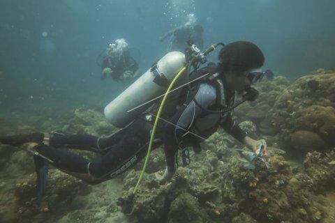 Bersihkan Laut Hari Pahlawan