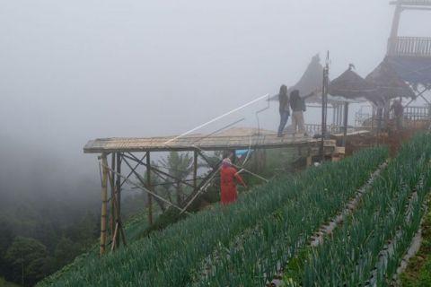 Lahan pertanian dijadikan tempat wisata