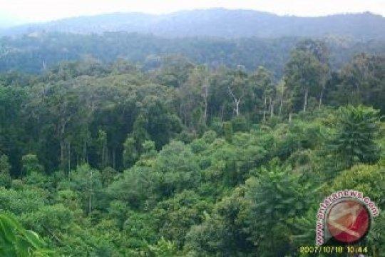 DPRD Bangka Tengah Minta Perusahaan Sosialisasikan HTI