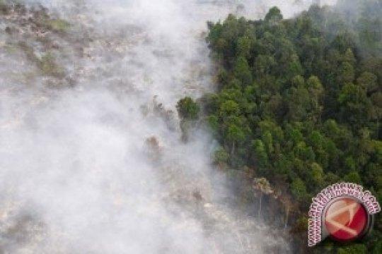 BNPB: Hutan Gunung Slamet-Lawu Masih Terbakar