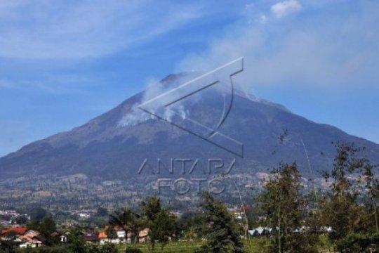 Hutan Gunung Sindoro Terbakar Lagi