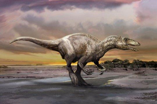 Fosil megaraptor, penghuni terakhir Bumi, ditemukan di Argentina