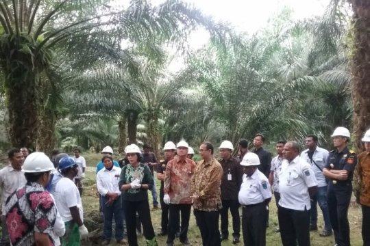 Menteri Keuangan Sri Mulyani dialog dengan petani sawit di Manokwari