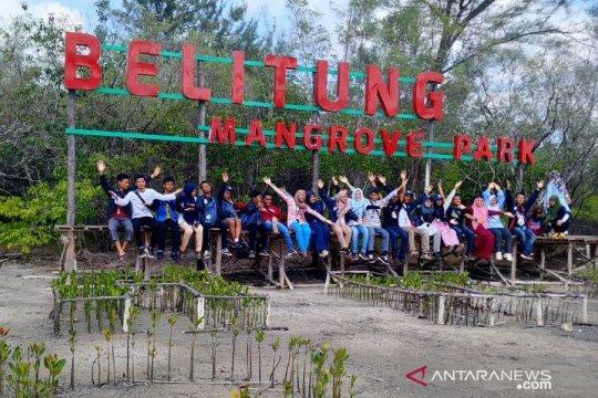 SMN asal Sulawesi Tenggara kunjungi Belitung Mangrove Park