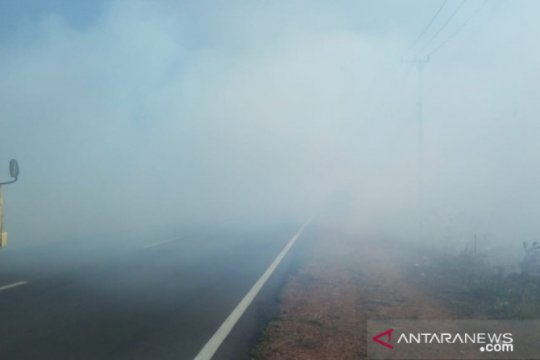 Masyarakat Babel diminta tidak bakar lahan untuk kurangi kabut asap