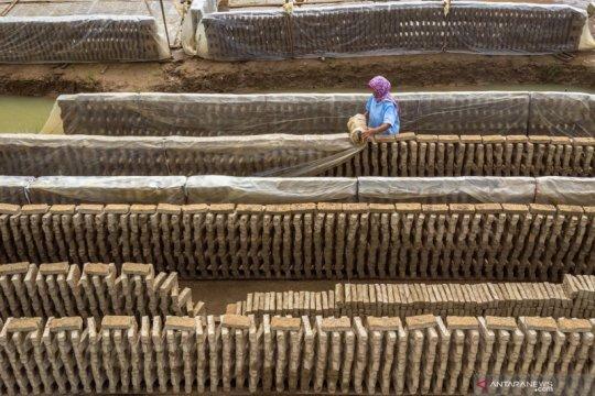 Menengok sentra industri batu bata di Demak