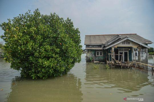 Kampung Beting yang perlahan hilang ditelan abrasi