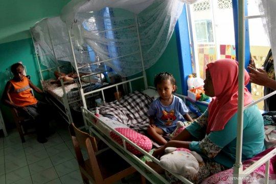 Pasien DBD di Sikka menurun