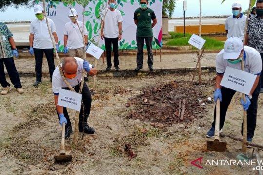 Wali Kota Pangkalpinang dan PLN UP3 Bangka lakukan penghijauan Pantai Pasir Padi