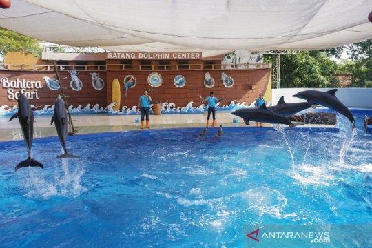 Simulasi pembukaan wisata edukasi satwa Batang Dolphins Center