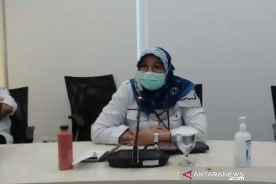 Kemenkes: African swine fever berbeda dengan flu babi