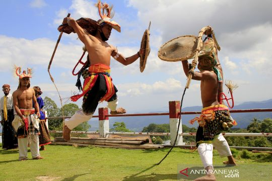 Atraksi tarian perang khas masyarakat Manggarai