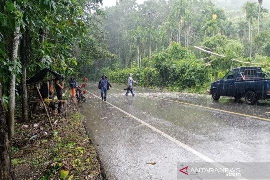 Pohon tumbang di Aceh timpa sepeda motor dan kabel listik PLN