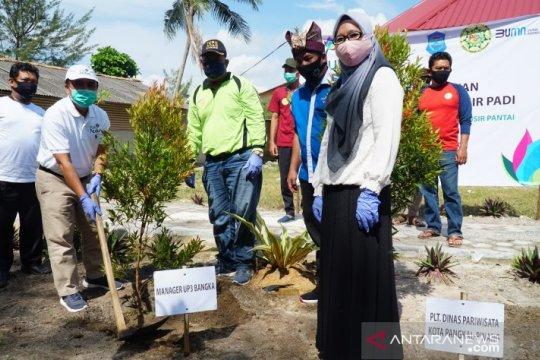 PLN Babel Bersama Kelompok Sadar Wisata Tanam 1.000 Pohon