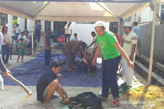 Kelompok kerja wartawan Belitung sembelih empat ekor hewan kurban