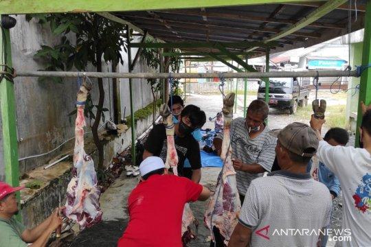 Stikes Tanah Bumbu bagikan 126 paket daging kurban