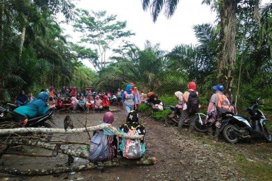 Seratusan buruh perempuan PT DDP di Mukomuko tutup jalan perusahaan