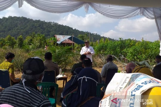 Kementan dorong petani lada di Belitung terus berinovasi
